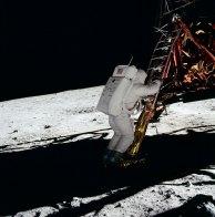 Aldrin lands