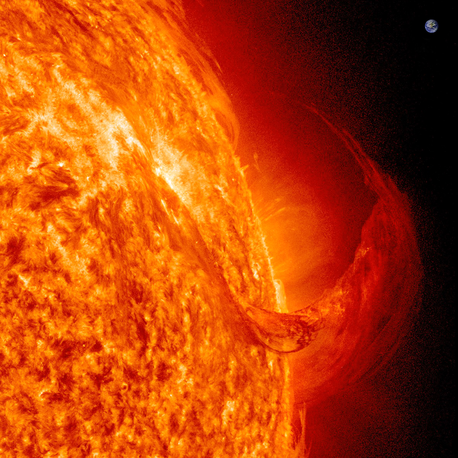 Large Solar Lights