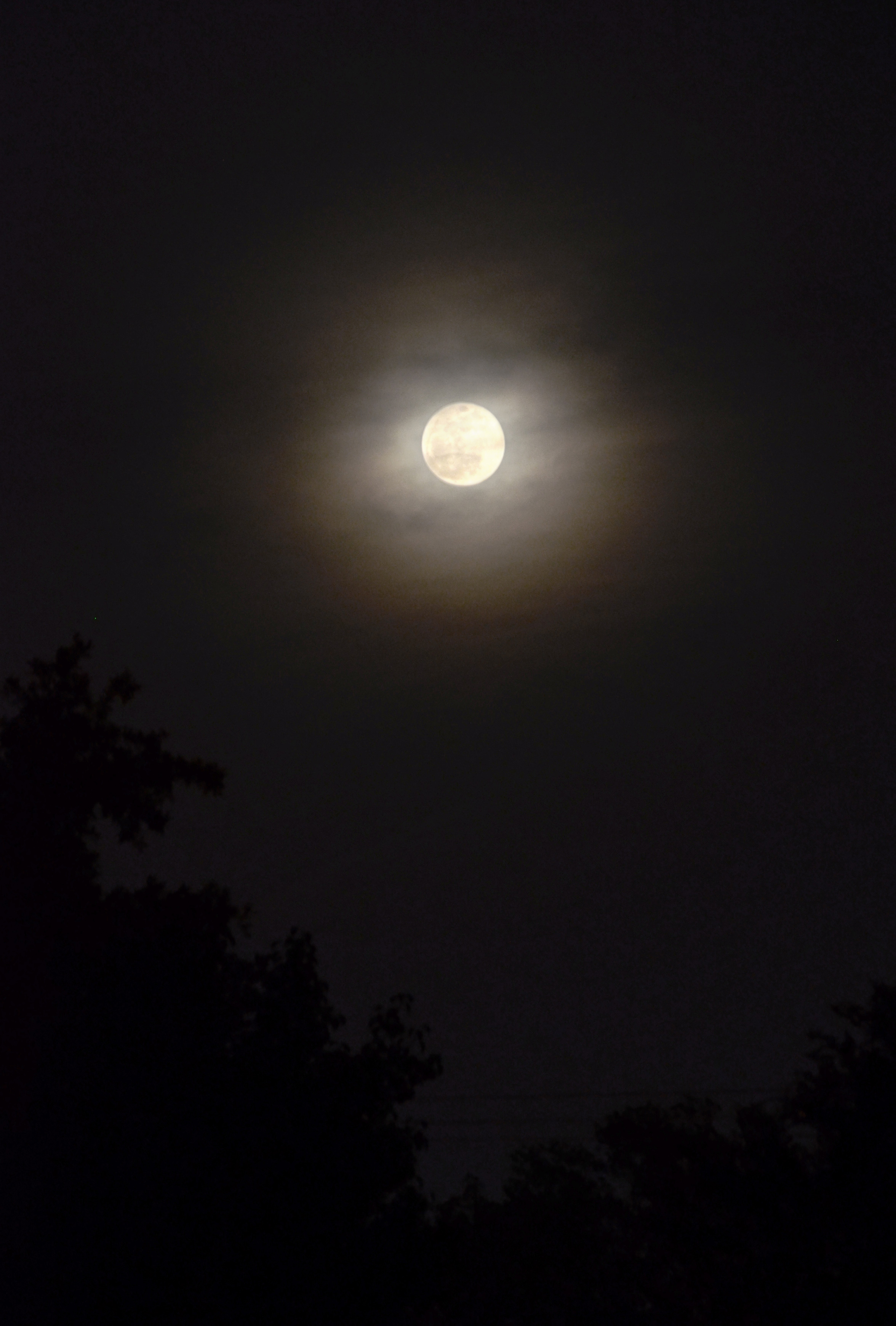 Image result for pictures of the supermoon last night