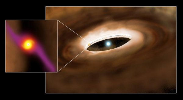 Illustration of the young massive star HD100546 and its surrounding disk (P. Marenfeld & NOAO/AURA/NSF)