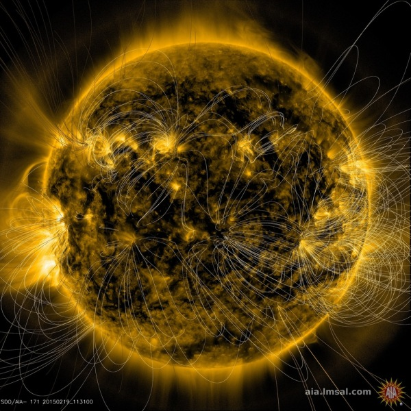 Image of the Sun from NASA's SDO spacecraft AIA assembly showing a PFSS (Potential Field Source Surface) map of its magnetic field lines. (Credit: NASA/SDO and the AIA science team.)