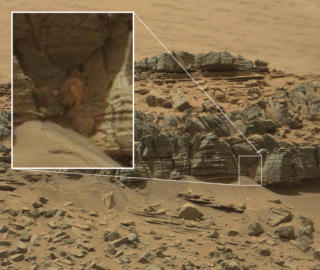 No This Is Not an Alien Cave Crab on Mars